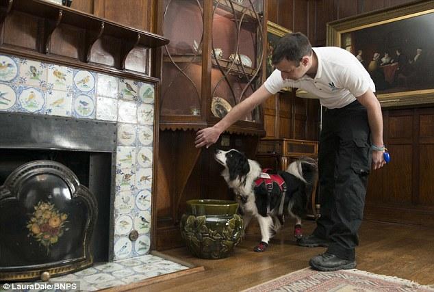 Mark Doggett com a cachorra Meg. (Foto: Reprodução / Daily Mail UK)