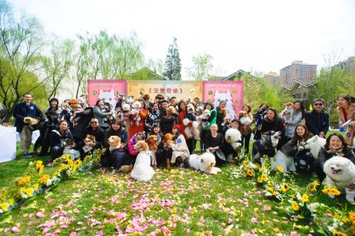 Casamento coletivo de cachorros. (Foto: Reprodução / PR Newswire)