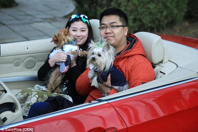 Os cães chegarem em carrões. (Foto: Reprodução / Daily Mail UK)