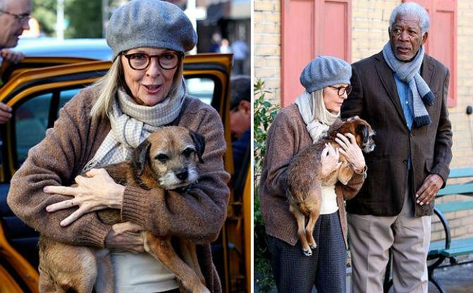 Diane Keaton e Morgan Freeman com a cachorra. (Foto: Reprodução / Bark Post)