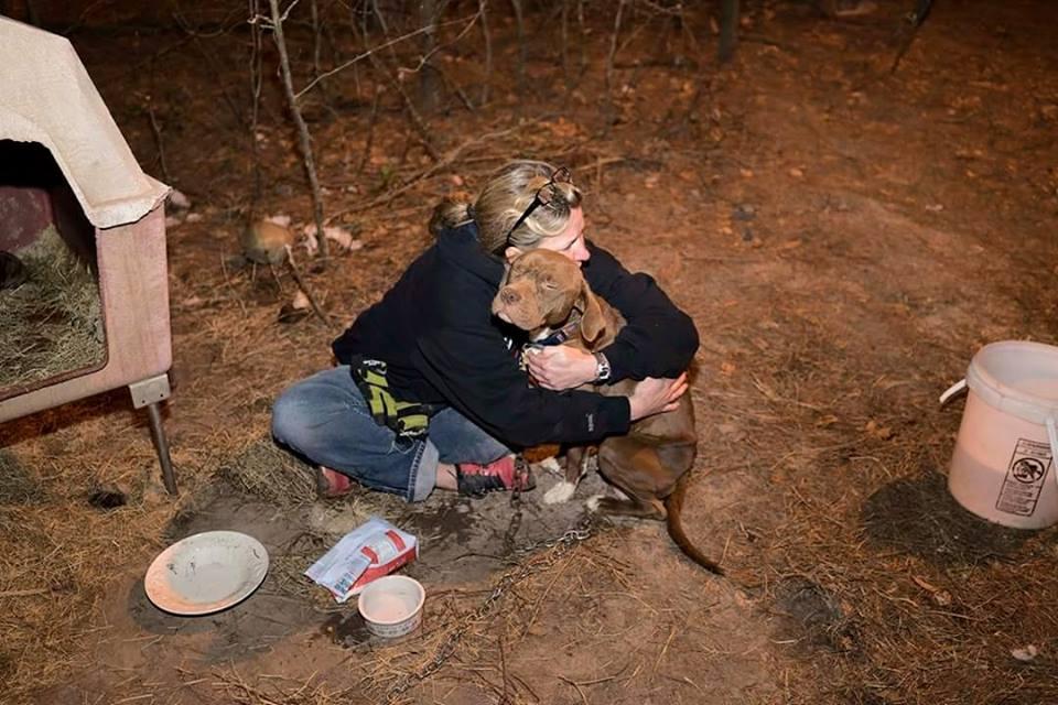 A cachorra Nina recebendo um abraço carinhoso da voluntária Amie, da ONG  Carolina Waterfowl Rescue Society, durante o resgate. (Foto: Reprodução / Facebook /  Carolina Waterfowl Rescue Society)