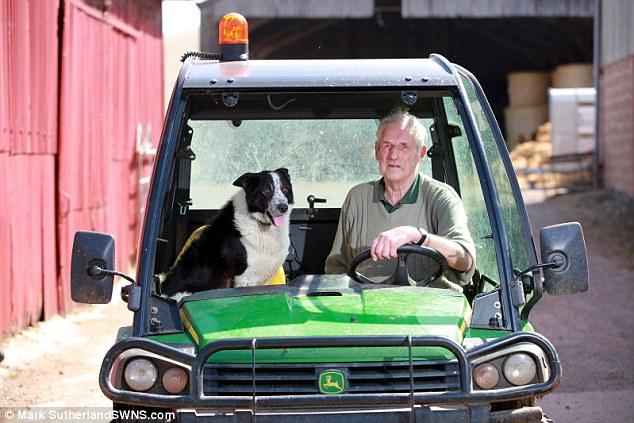 O cão Don e Tom Hamilton. (Foto: Reprodução / Daily Mail UK)