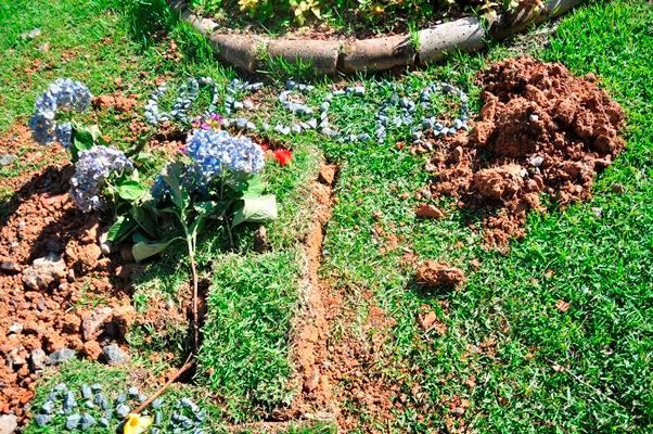 O cão foi enterrado e recebeu homenagens no campus. (Foto: Reprodução