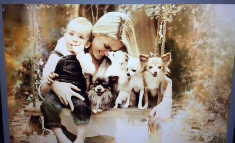 Ana Hickmann, seu filho Alexandre e 4 de seus cachorros. (Foto: Reprodução / Facebook / Luisa Mell)