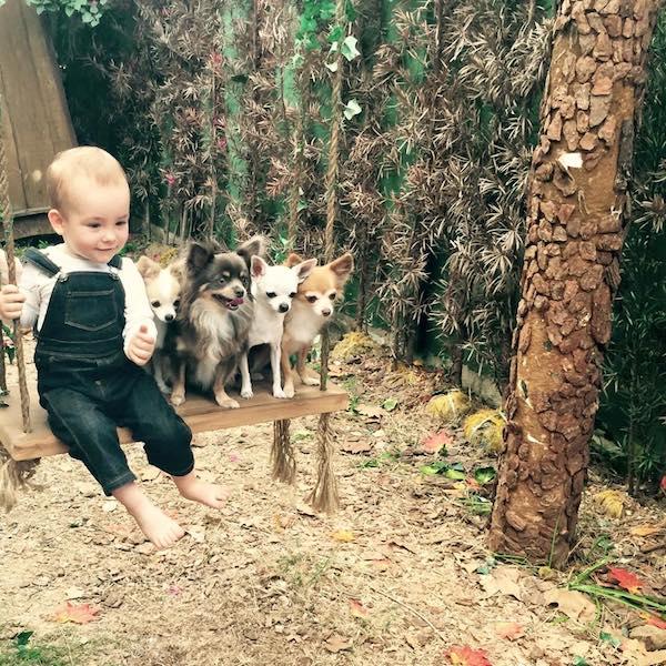 Alexandre vive em harmonia com seus irmãos caninos. (Foto: Reprodução / Facebook / Ana Hickmann)