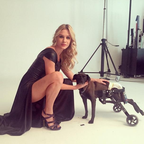 Fiorella Mattheis com o Valente, o cão guerreiro. Ele foi um dos ganhadores do concurso feito pela Ampara Animal.  (Foto: Reprodução / Instagram)