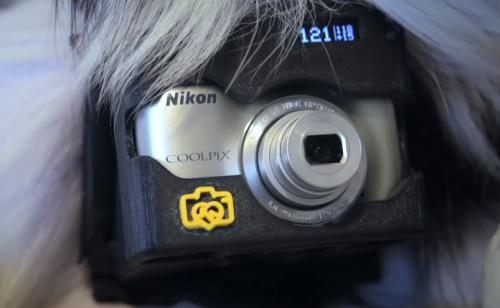 Dispositivo com a câmera Nikon Coolpix L31. (Foto: Reprodução / Youtube / Nikon Asia)