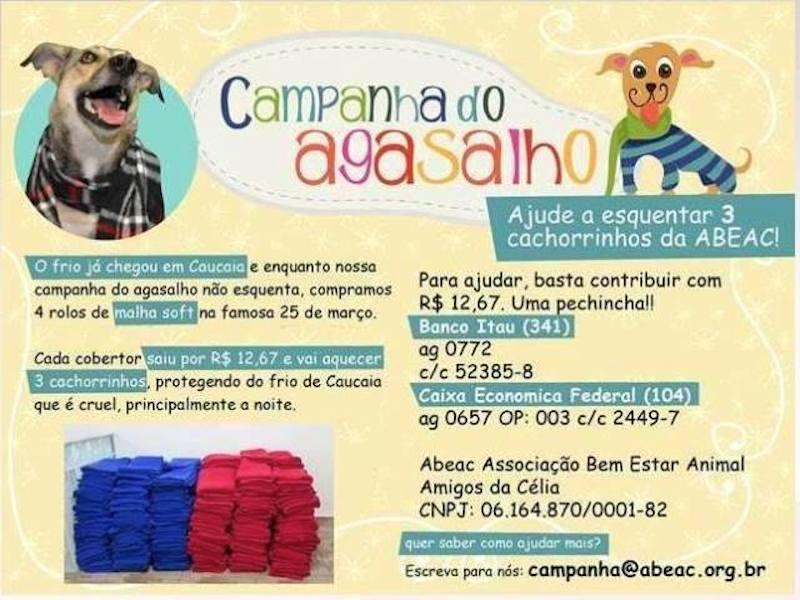 campanha-agasalho-abeac-08