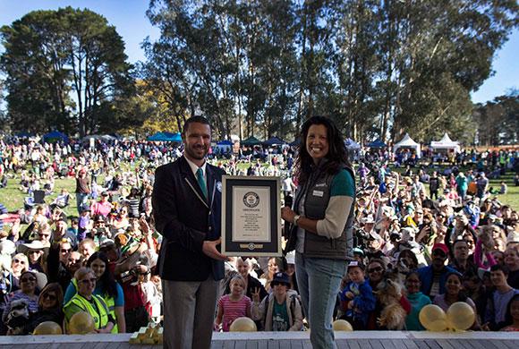 Certificado do Guinness World Records. (Foto: Reprodução / Guinness World Records)