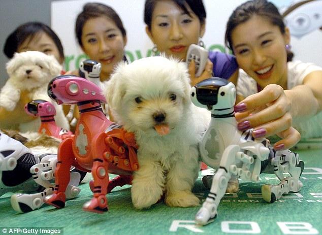Robôs no lugar dos nossos queridos pets? (Foto: Reprodução / Daily Mail UK)