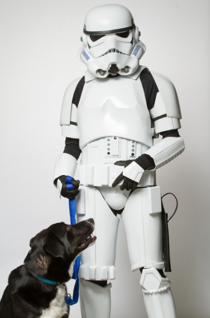 star-wars-dog-01