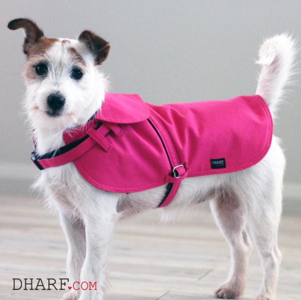 Casaco impermeável para cães. (Foto: Divulgação / Dharf)