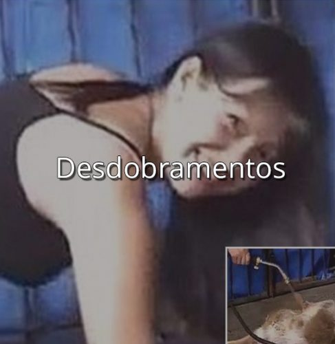 mulher-macarico-noticia-cachorro