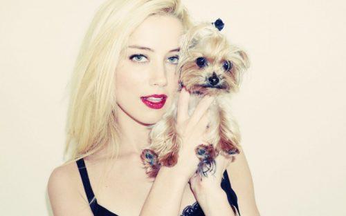 Amber Heard. Foto: Reprodução