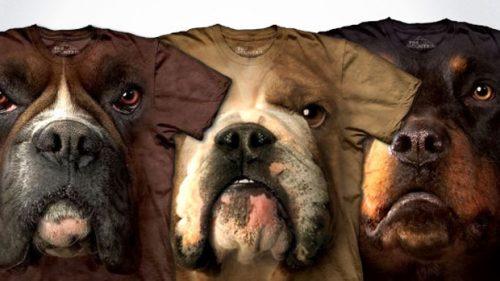 cabecas-caninhas-cachorros-produtos (13)