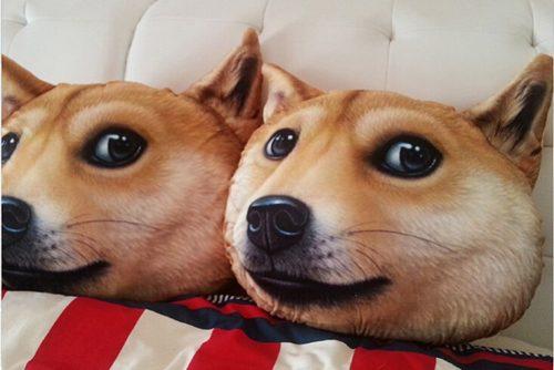 cabecas-caninhas-cachorros-produtos (2)