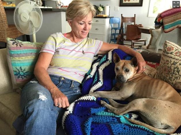 Kris Anderson com a cachorra Georgia. (Foto: Reprodução / NY Daily News)