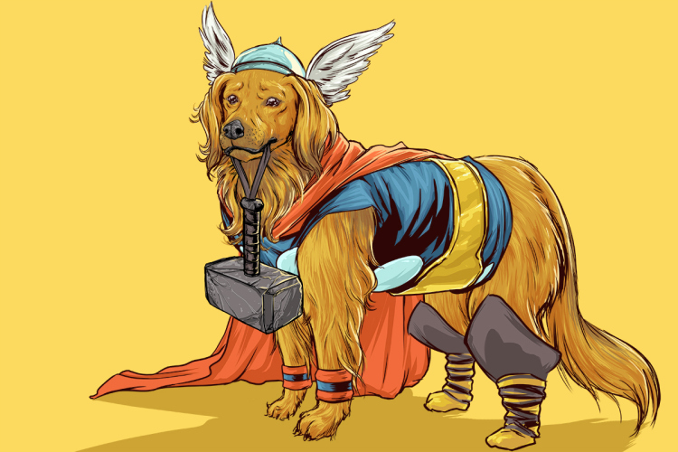 Thor. (Foto: Josh Lynch)