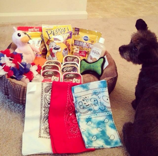 Chester recebeu muitos presentes em seu novo lar. (Foto: Reprodução / Facebook)