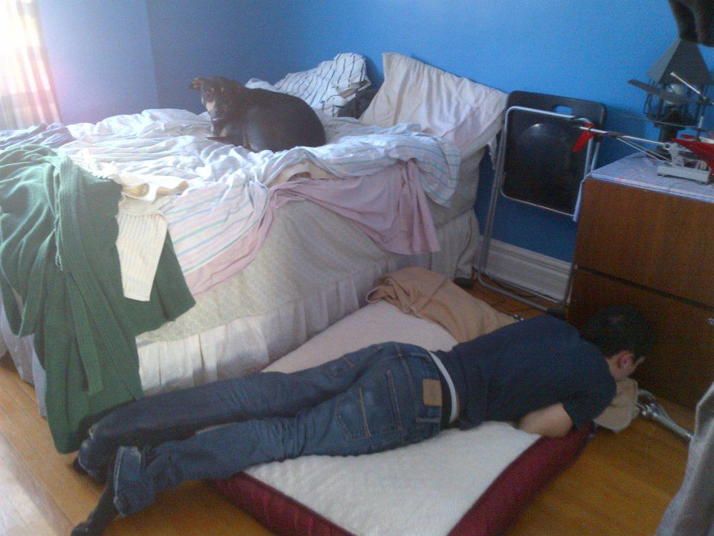 cachorros-cama-cheia (10)