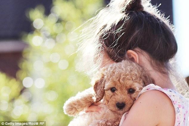 Cães e gatos fazem parte da família! (Foto: Reprodução / Daily Mail UK)