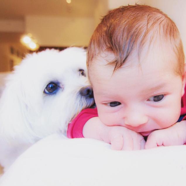 A cachorrinha Cali e o bebê Lucca, de Fernanda Machado. (Foto: Reprodução / Instagram)