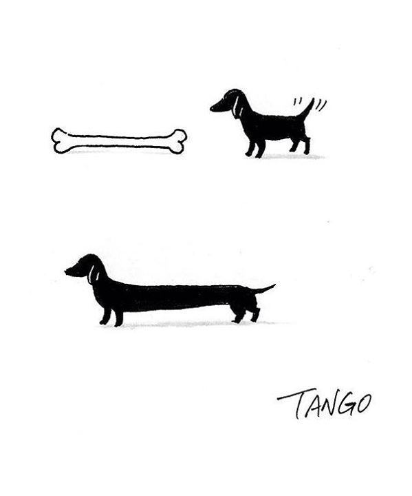 origem-dachshund