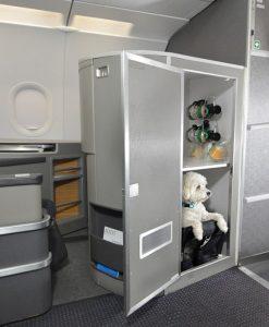 Foto: Divulgação/American Airlines