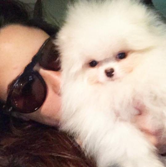Fernanda Vasconcelos com a cachorra Nina. (Foto: Reprodução / Instagram)