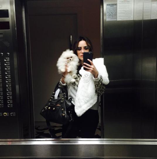 A atriz apresentou a cachorrinha como sua nova BFF (sigla de Best Friends Forever, que significa