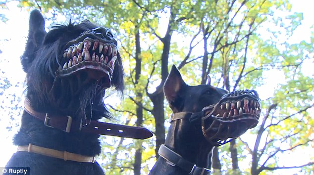 cachorro-focinheira-assustadora-01