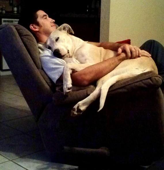 (Foto: Reprodução / Life With Dogs)