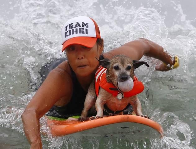 Jill Nakano nadando com  Kihei, participando da categoria cães pequenos.  (Foto: Reprodução / Metro UK / REUTERS / Mike Blake)