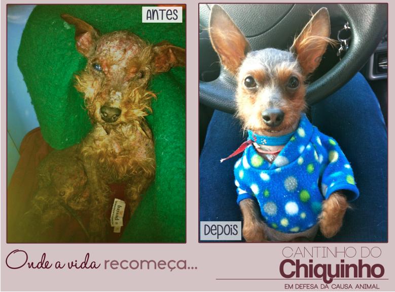 Antes e depois de Chiquinho. Foto: Divulgação
