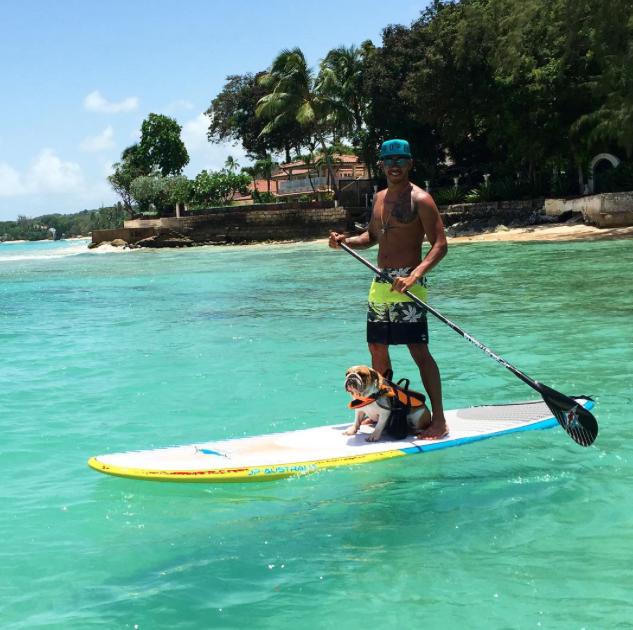 Lewis Hamilton e a cachorra Coconut praticando stand up paddle. (Foto: Reprodução / Instagram)