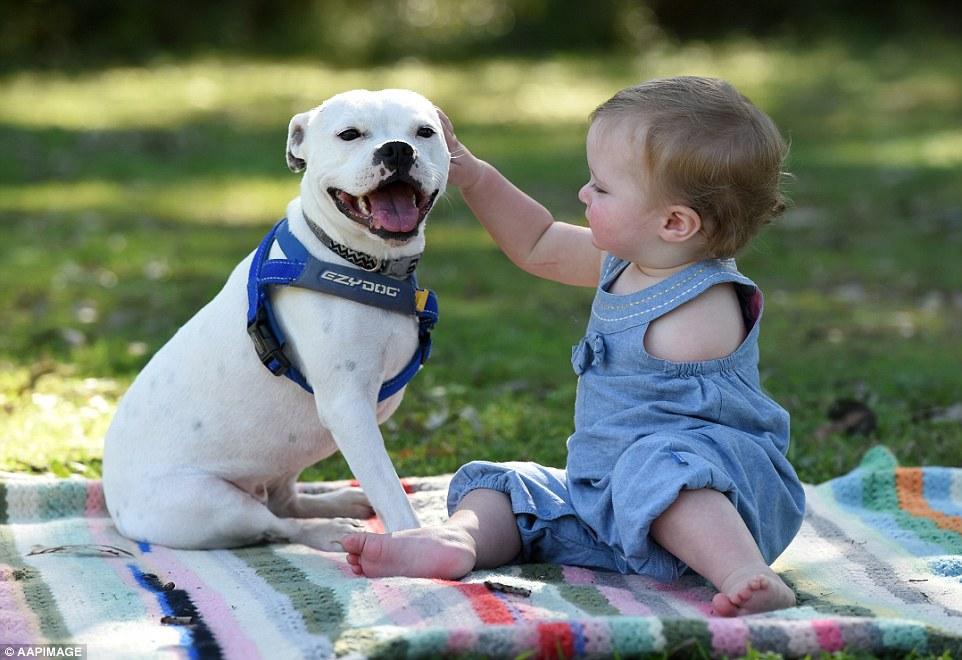 A cachorra Snowy e a menina Ella são grandes amigas. (Foto: Reprodução / Daily Mail UK)