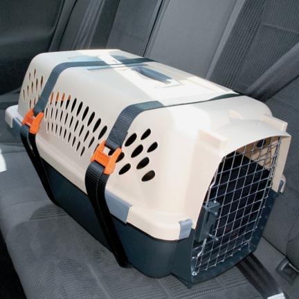 Caixa de transporte para cães. Foto: Reprodução