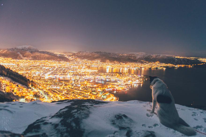 akiak-husky-siberiano-noruega-04
