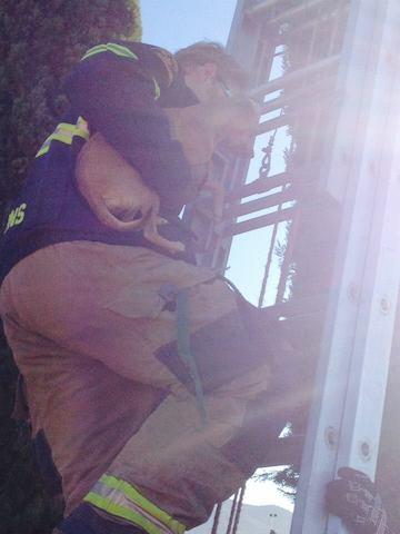 Bombeiro resgatando a cadelinha em segurança. (Foto: Reprodução / Facebook / Kern County Animal Services)