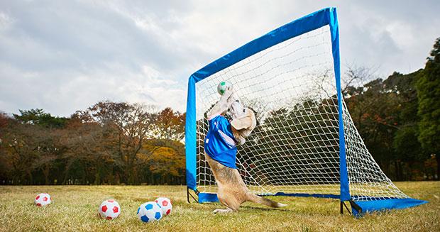 Nenhuma bola entra no gol de Purin. (Foto: Reprodução / Guinness World Records)