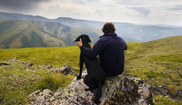Uma pessoa ativa provavelmente terá um cão que acompanhe suas aventuras. (Foto: Reprodução / Google)