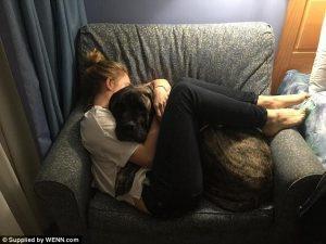Cães e tutores têm personalidades parecidas. (Foto: Reprodução / Daily Mail UK)