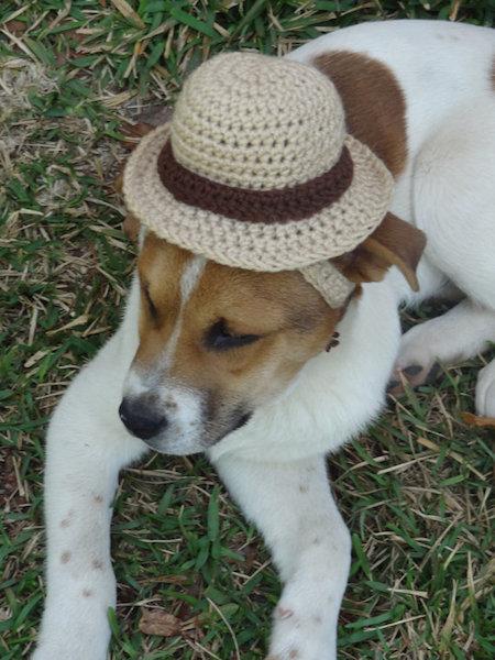 Imitando um chapéu de palha. (Foto: Reproução / Etsy)
