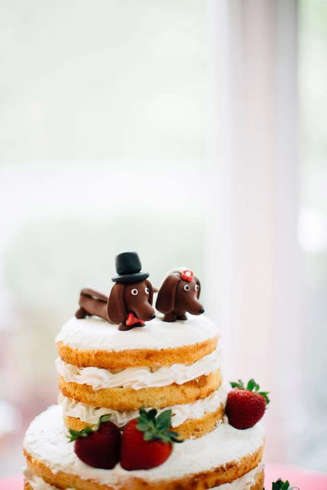 topo-bolo-cachorro-casamento (4)