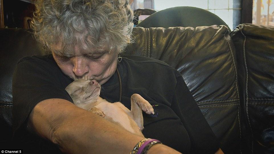 """Lynn afirma que é """"louca por cães"""". (Foto: Reprodução / Daily Mail UK)"""