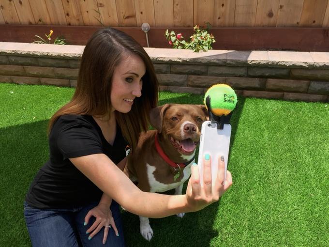 Quer algo mais estimulante do que uma bolinha para chamar atenção de um cachorro? (Foto: Reprodução / Kickstarter)