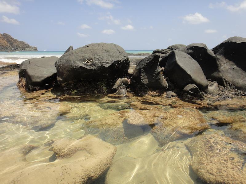 É possível ver peixes até em pequenas piscinas naturais. (Foto: Karina Sakita)