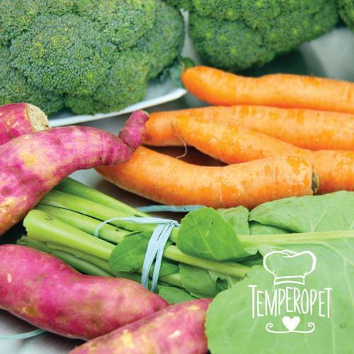 Todas as refeições da Tempero Pet são feitas com alimentos saudáveis. (Foto: Divulgação)