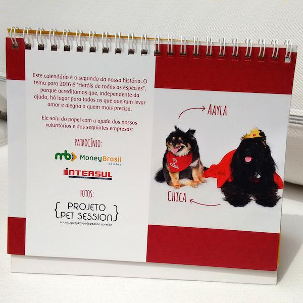 A renda obtida com a venda do calendário será utilizada para continuar o trabalho da ONG. (Foto: Divulgação / Patas Therapeutas)