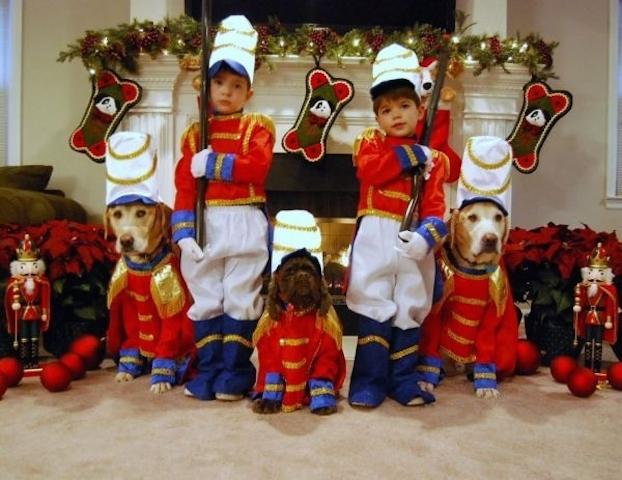 cartao-natal-cachorro-13